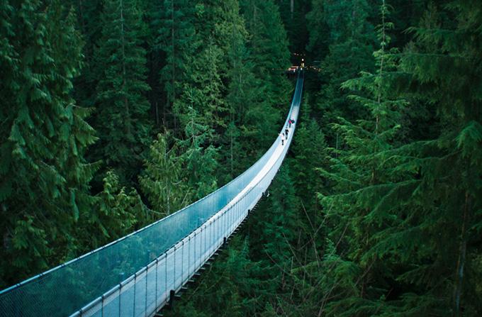 Capilano suspension bridge, Vancouver, British Columbia.