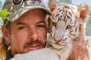 Tiger King abridora