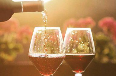 vino Tacama Delivery