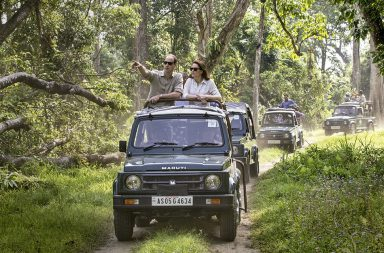 Safaris de conservación África