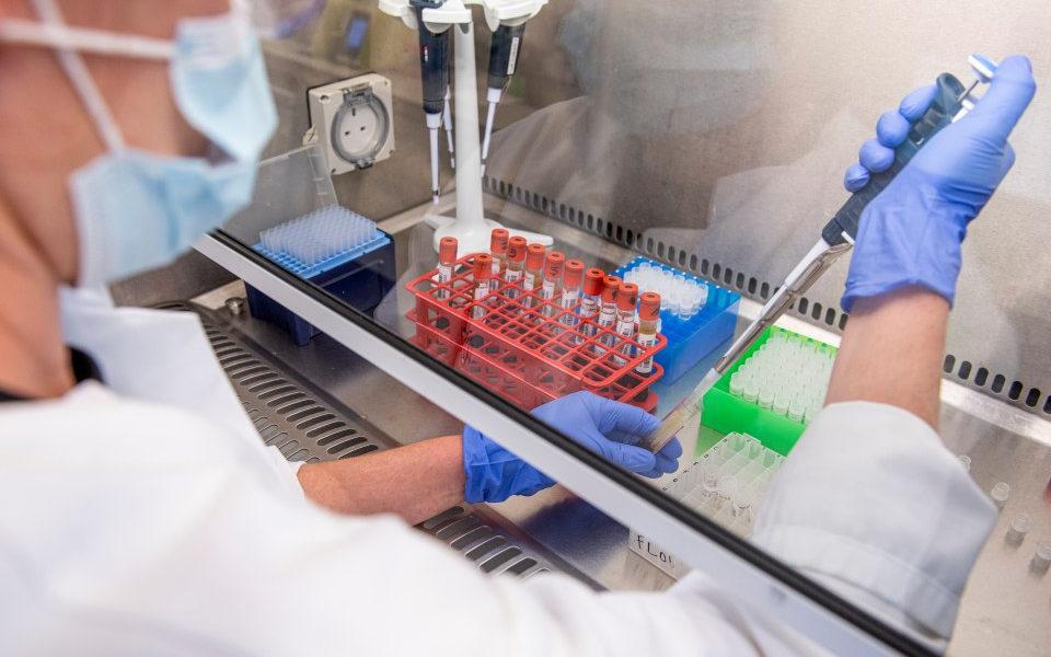 Oxford reinicia pruebas de la vacuna
