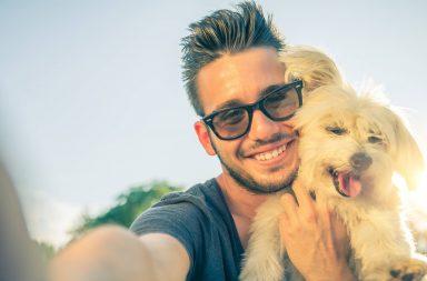 Por amor a las mascotas perros y gatos 2