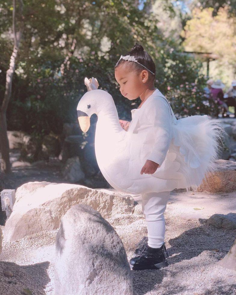 True, la pequeña hija de Khloé Kardashian, con un atuendo de cisne.