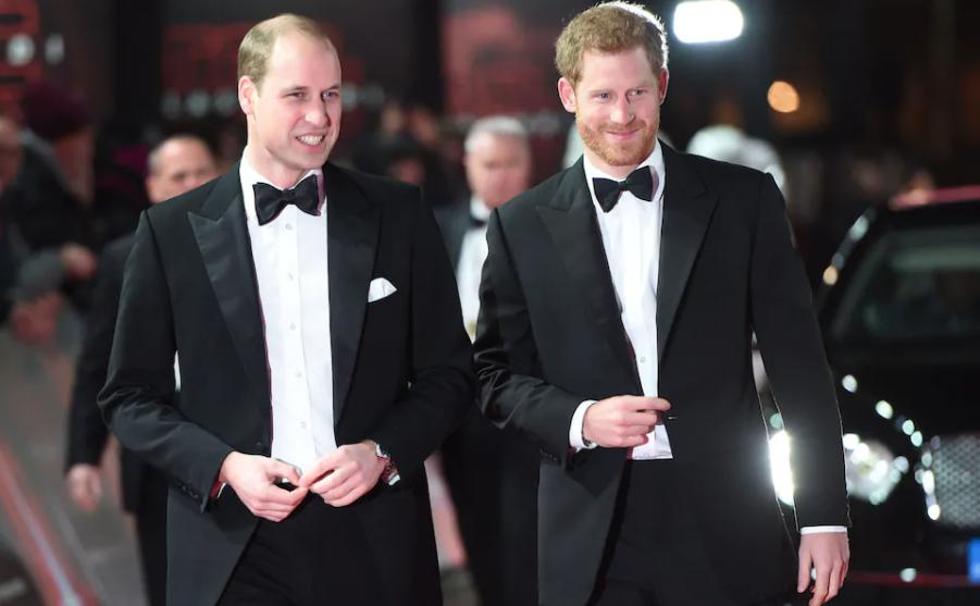 Los príncipes, hijos de Diana