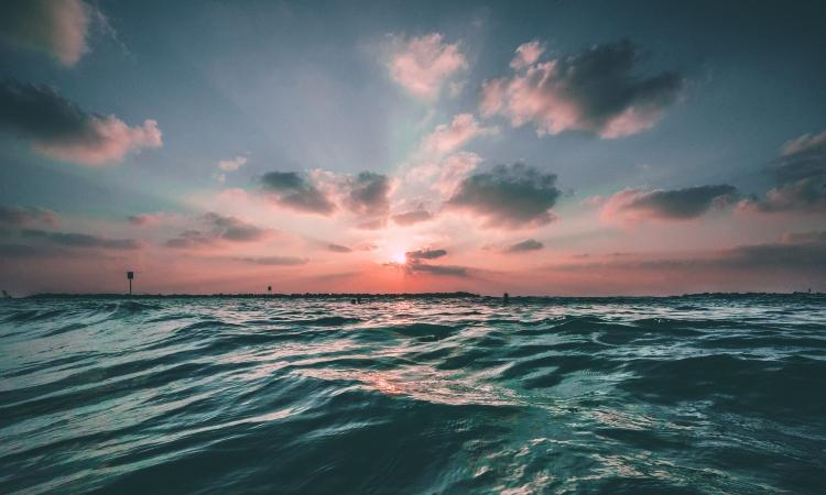OCEANOSWEB