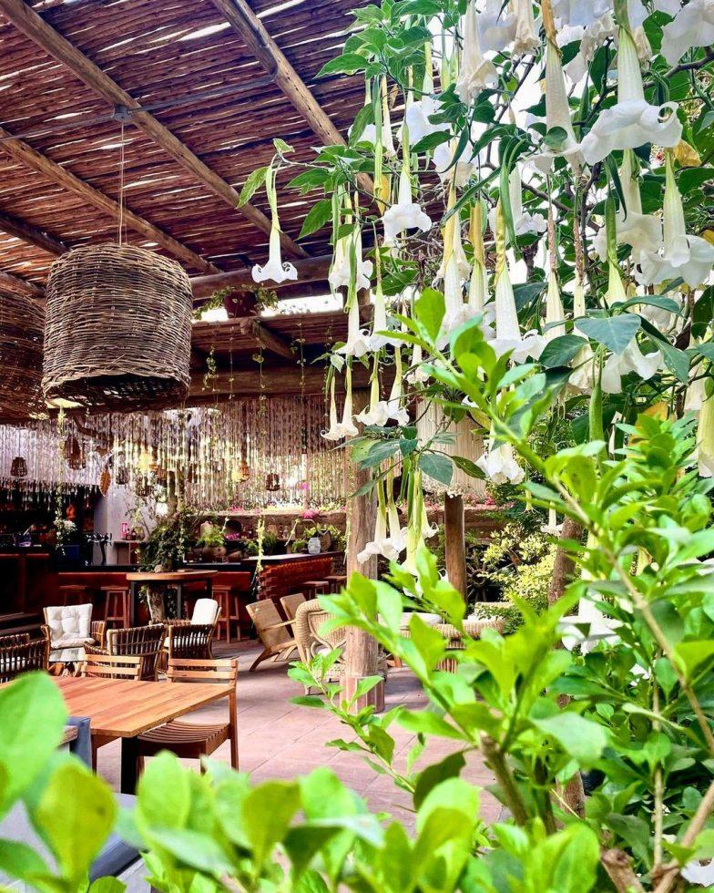 restaurantes fauna