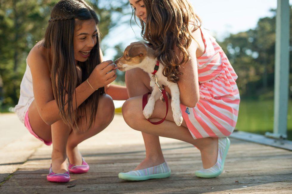 perros y niñas